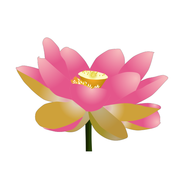 Yoga Lotus Flower PNG Clip art