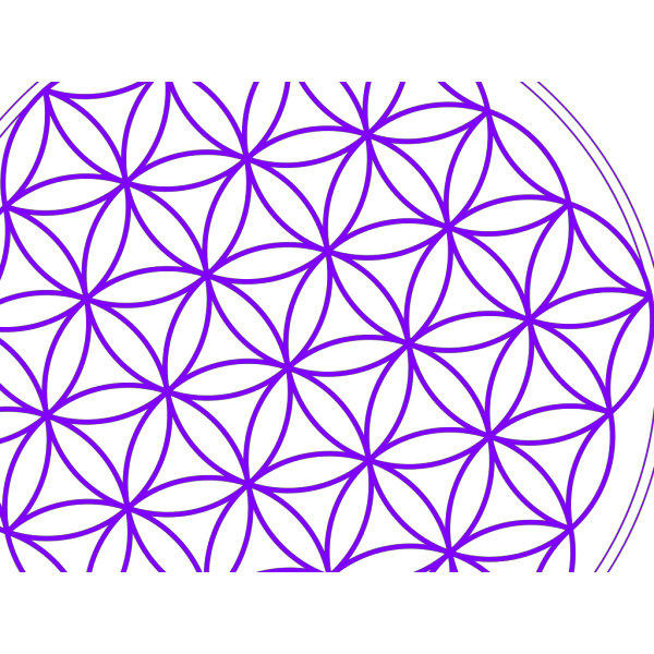 Flower Of Life Purple PNG Clip art