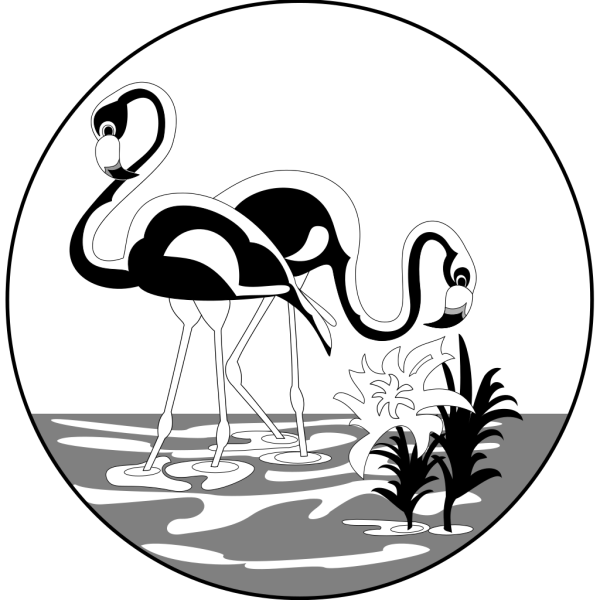 Black And White Flamingos PNG Clip art