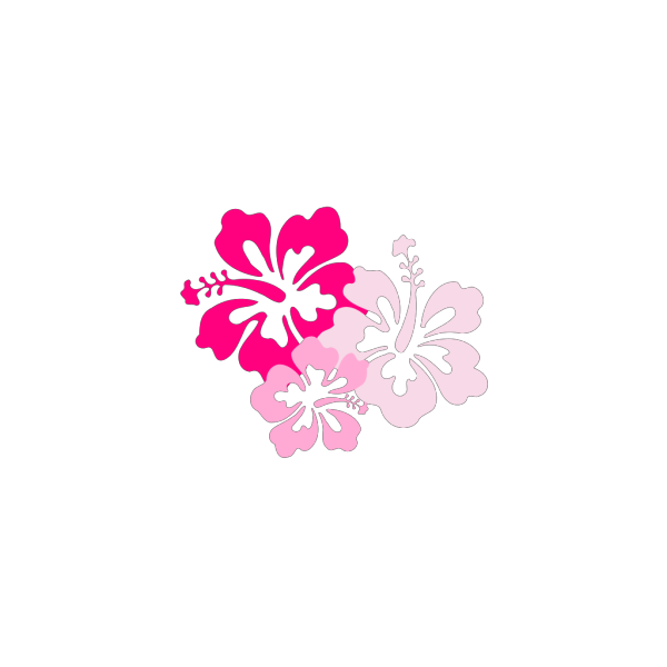 Hibiscus Pink PNG Clip art