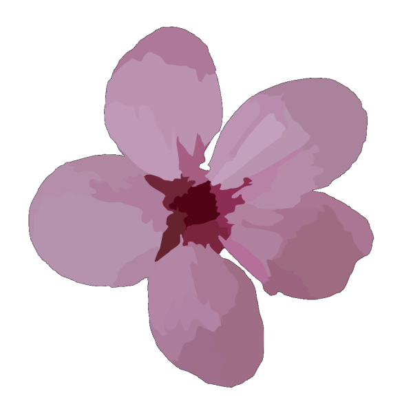 Plum Blossom PNG Clip art