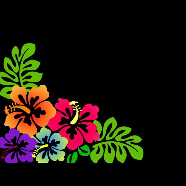 Hibiscus3 PNG Clip art