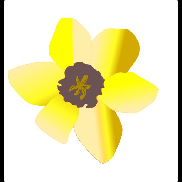 Daffodil (stripped) PNG Clip art