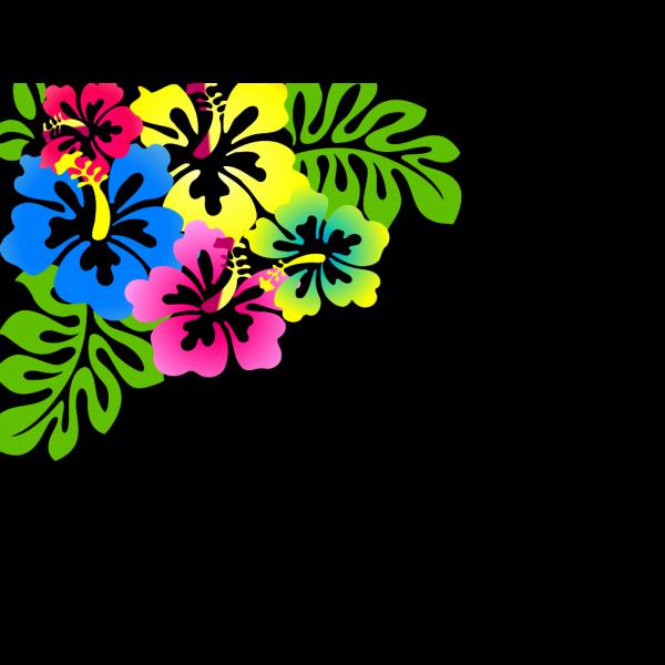 Hibiscus6 PNG Clip art
