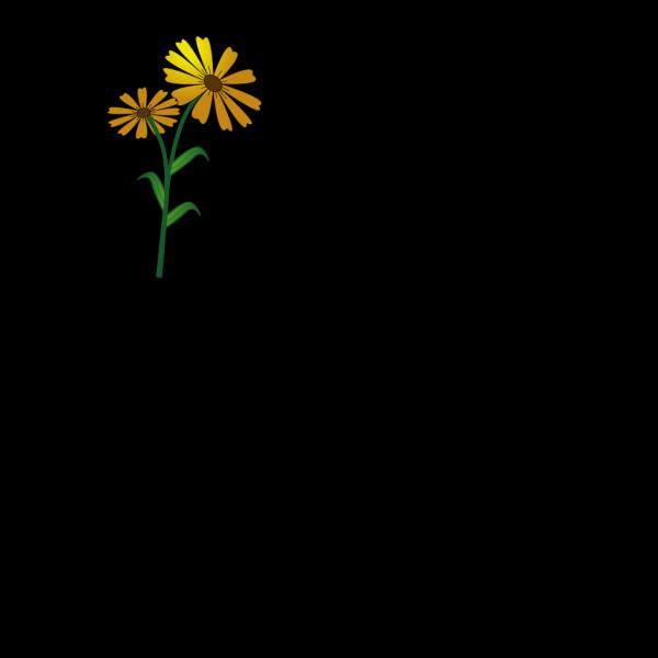 Daisy3 PNG Clip art
