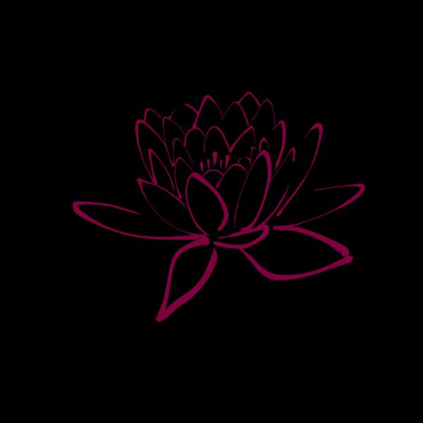 Fuschia Lotus PNG Clip art