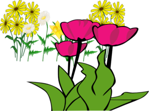 Some Flowers PNG Clip art