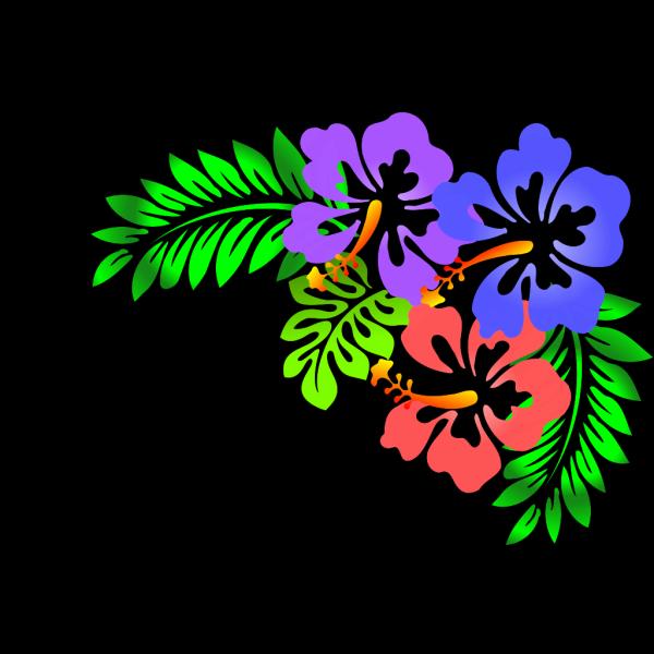 Hibiscus Corner PNG Clip art