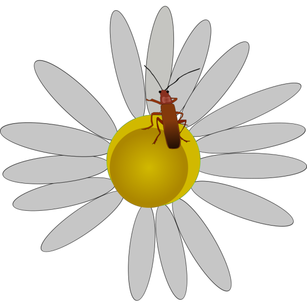 Bug On A Daisy PNG Clip art