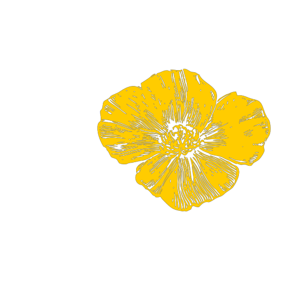 Yellow Poppy2 PNG Clip art