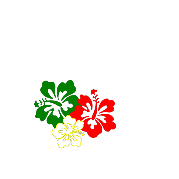 Saturated Hibiscus Flowers PNG Clip art