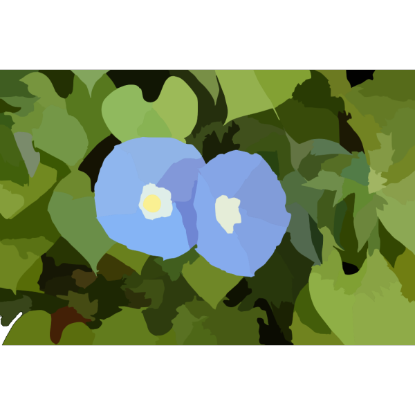 Morningglory PNG Clip art