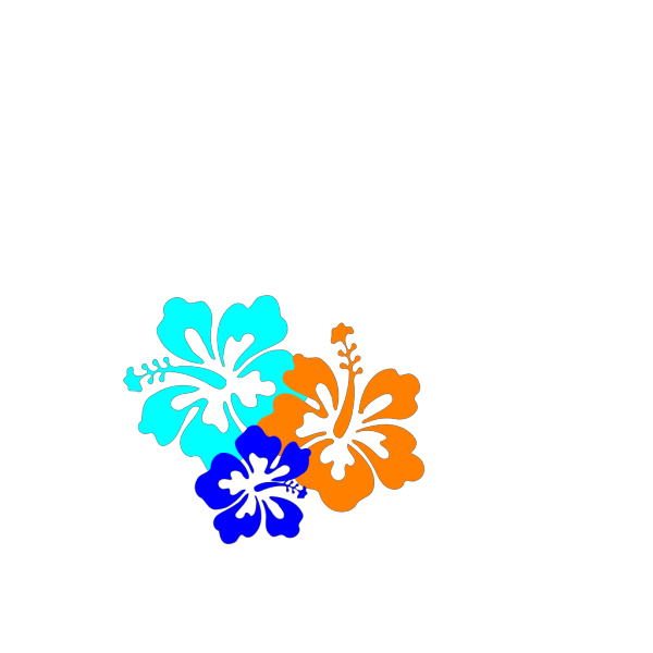 Hibiscus Flowers 2 PNG Clip art