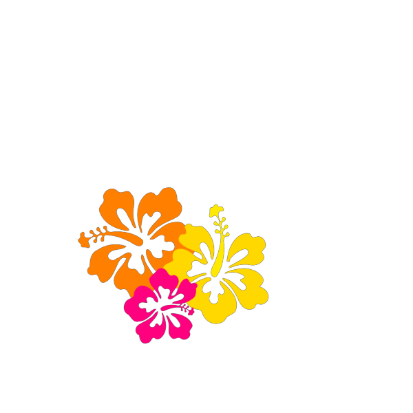 Hibiscus Flowers 5 PNG Clip art