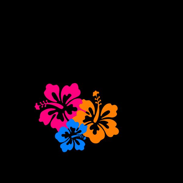 Hibiscus Flower 6 PNG Clip art