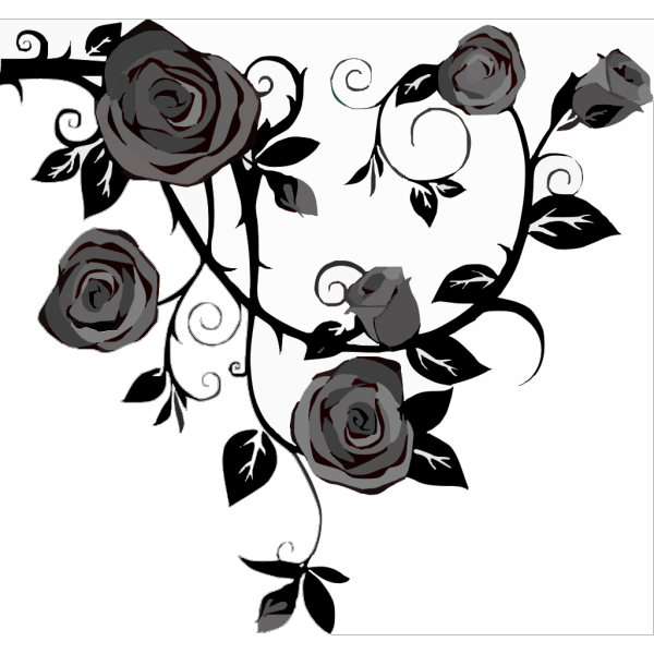 Gray Roses PNG image