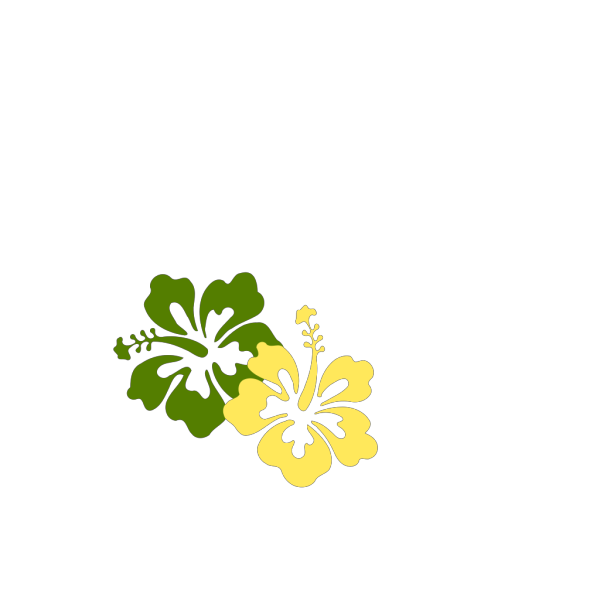 Hibiscus Flowers 8 PNG Clip art