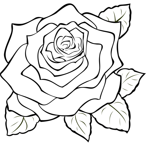 Uncoloured Rose PNG icon