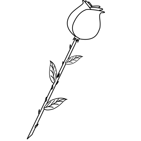 B&w Rose PNG Clip art