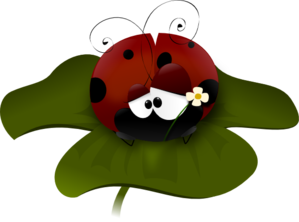 Pretty Ladybug On A Clover PNG Clip art