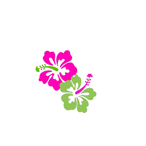 Hibiscus Pink Lime Green PNG Clip art