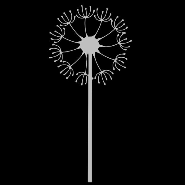 Gray Dandelion PNG Clip art