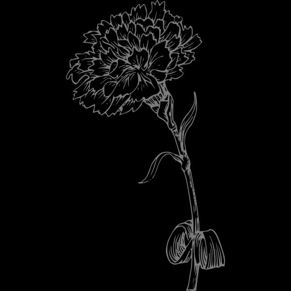 Grey Carnation PNG Clip art
