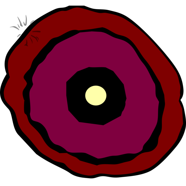 New Layered Poppy PNG Clip art
