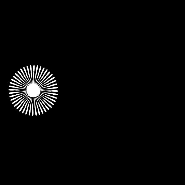 White Flower PNG Clip art