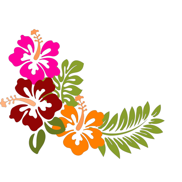Hibiscus Ray Of Color PNG Clip art
