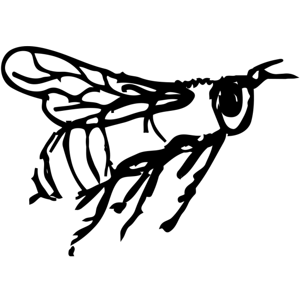 Flying Bee Drawing PNG Clip art