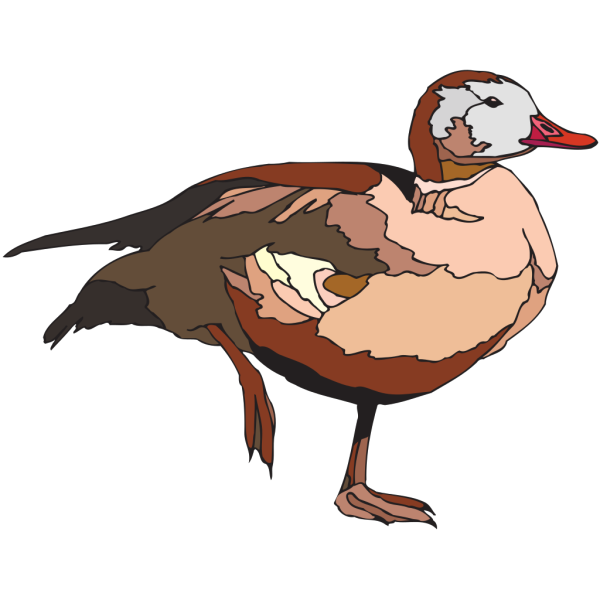 Duck On One Foot PNG Clip art