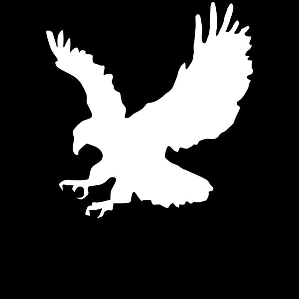 Gold Eagle Outline PNG Clip art