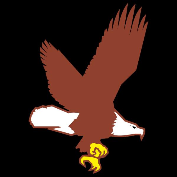Bald Eagle Flying PNG Clip art