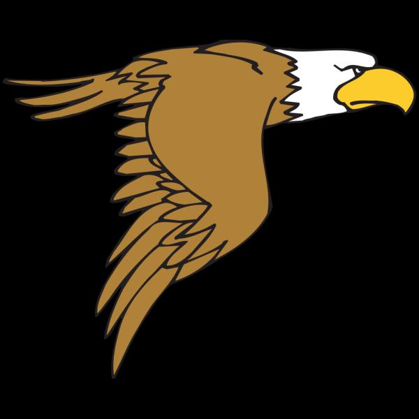 Flying Bald Eagle Cartoon PNG Clip art