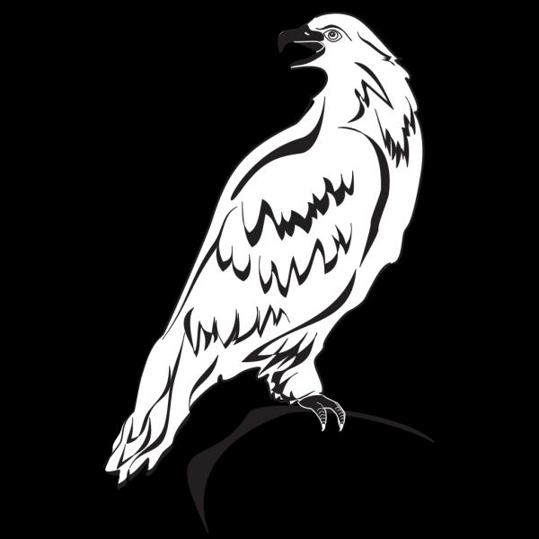 Perched Eagle Outline PNG Clip art