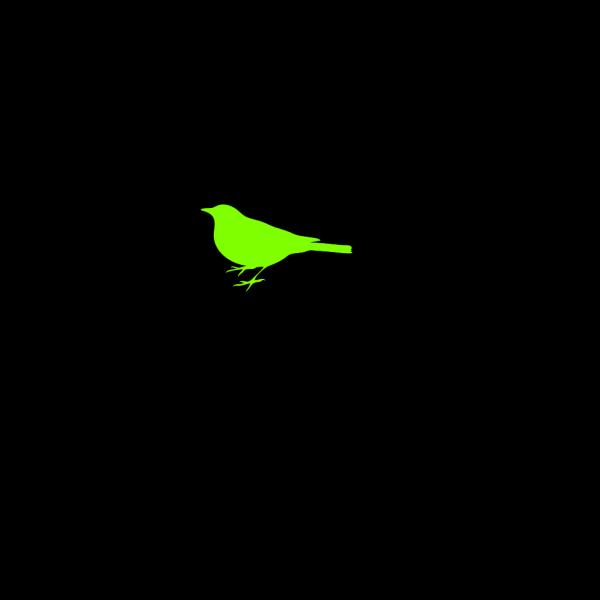 Parakeet PNG Clip art