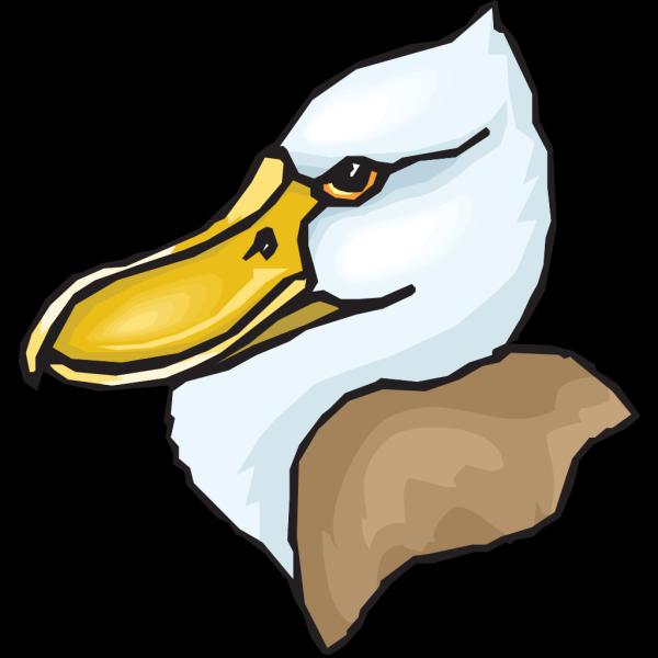 Big Beaked Duck Head PNG Clip art