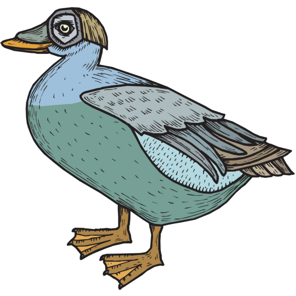 Blue And Green Feathered Duck PNG Clip art