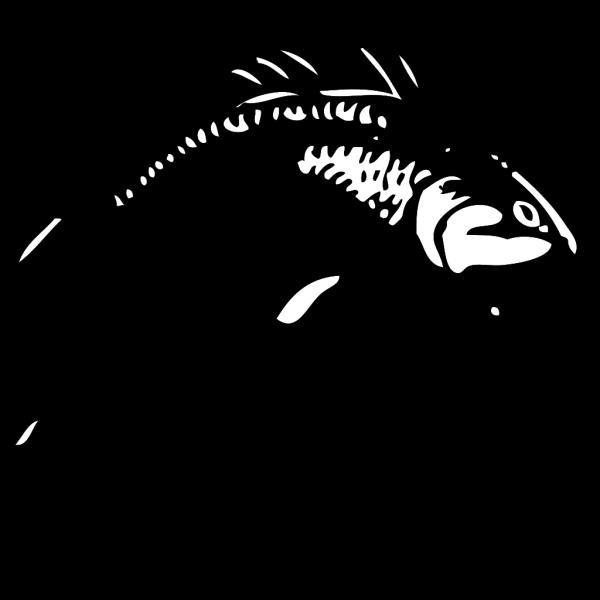 Jumping Fish PNG Clip art