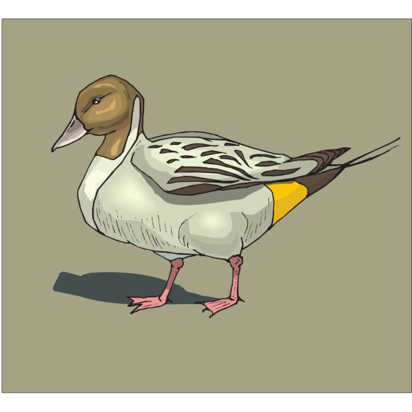 Duck With Brown Background