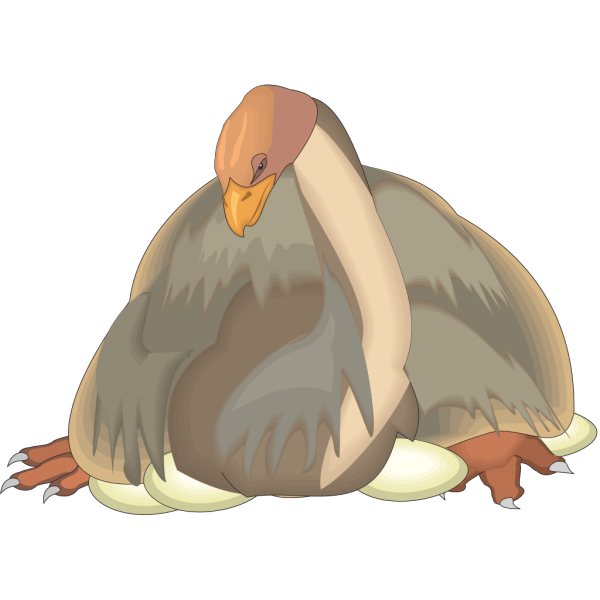 Dinornis In Nest PNG images