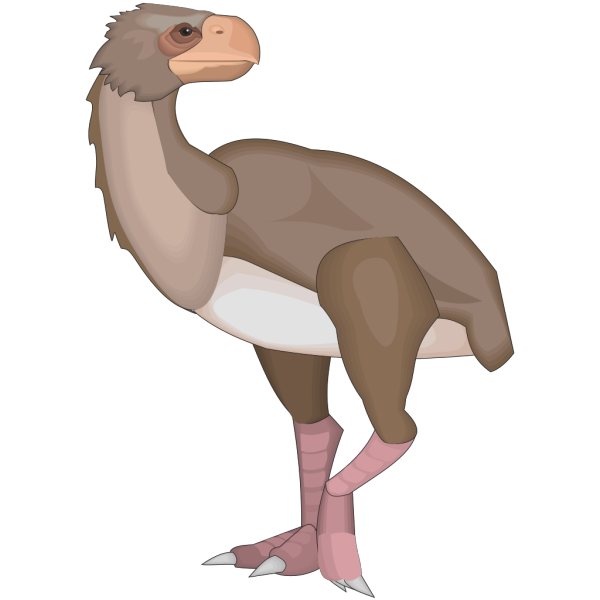 Diatryma Standing PNG Clip art