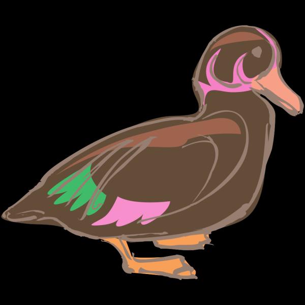 Stylized Duck Art PNG Clip art