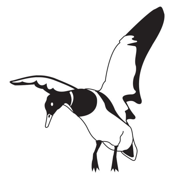 Landing Black And White Duck PNG Clip art