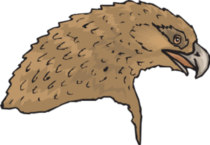Brown Feathered Eagle Head PNG Clip art