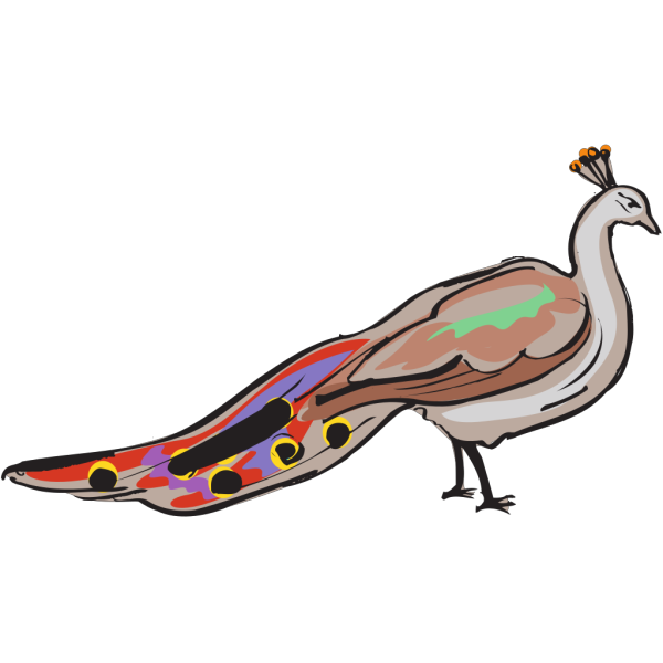 Colorful Peacock PNG Clip art