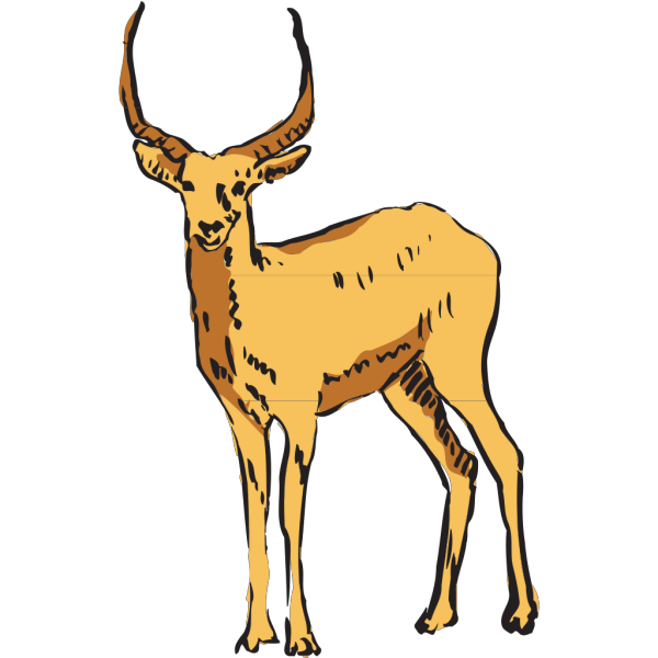 Standing Antelope Drawing PNG Clip art