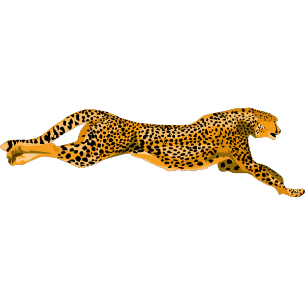 Ha Flosse Leopard Cheetah PNG icon