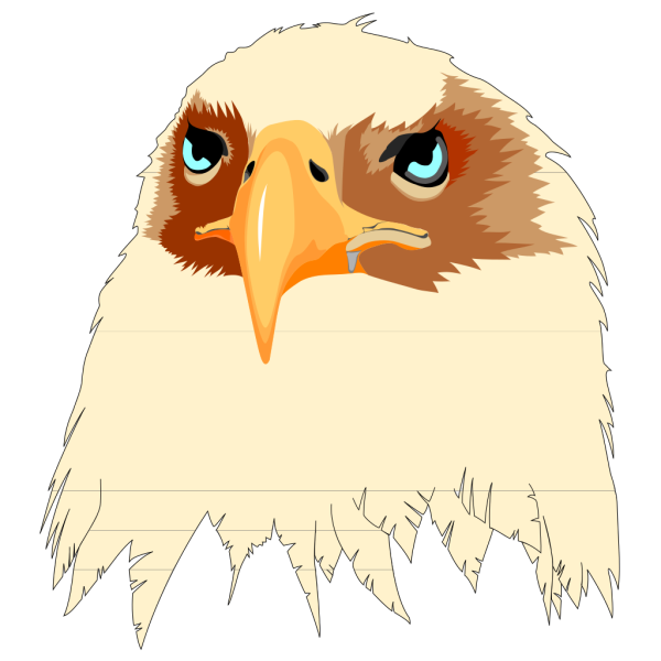 Tan Feathered Eagle Head PNG Clip art